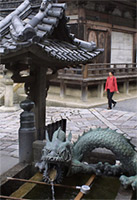Kiyomizu dragon