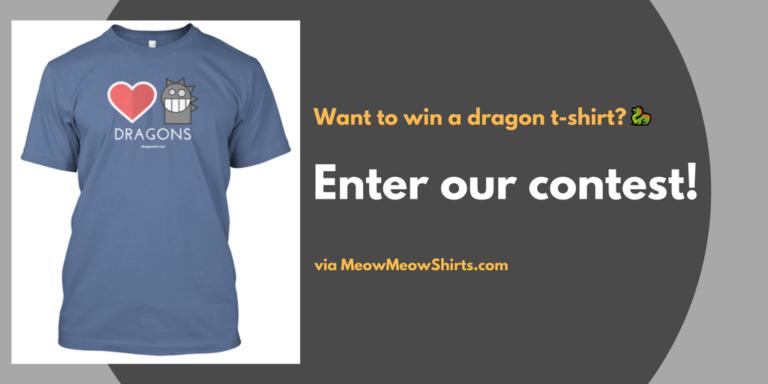 dragon_contest