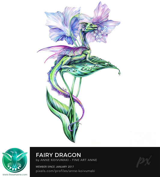 fairy_dragon
