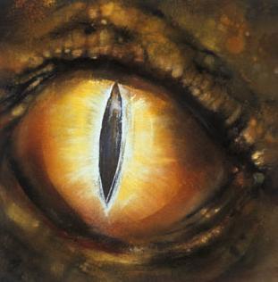 dragon_eye