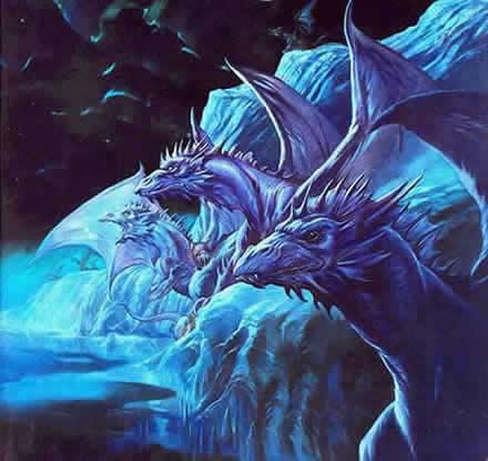 shore dragons