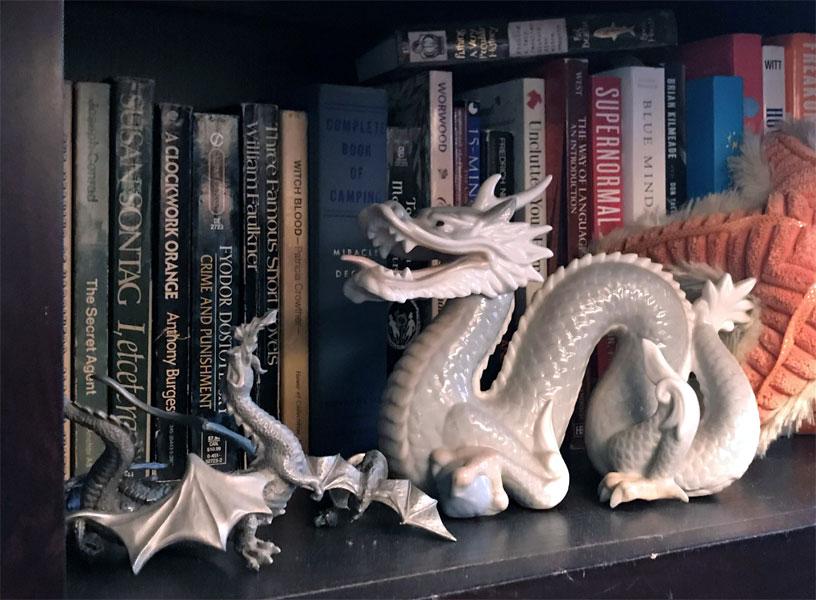grey_dragon
