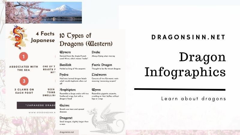 Dragon Infographics